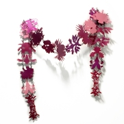 Blooming Taxonomy - Boa